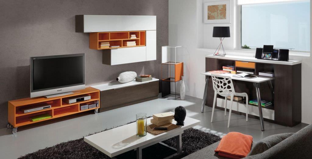 Living Room Cabinet Designs