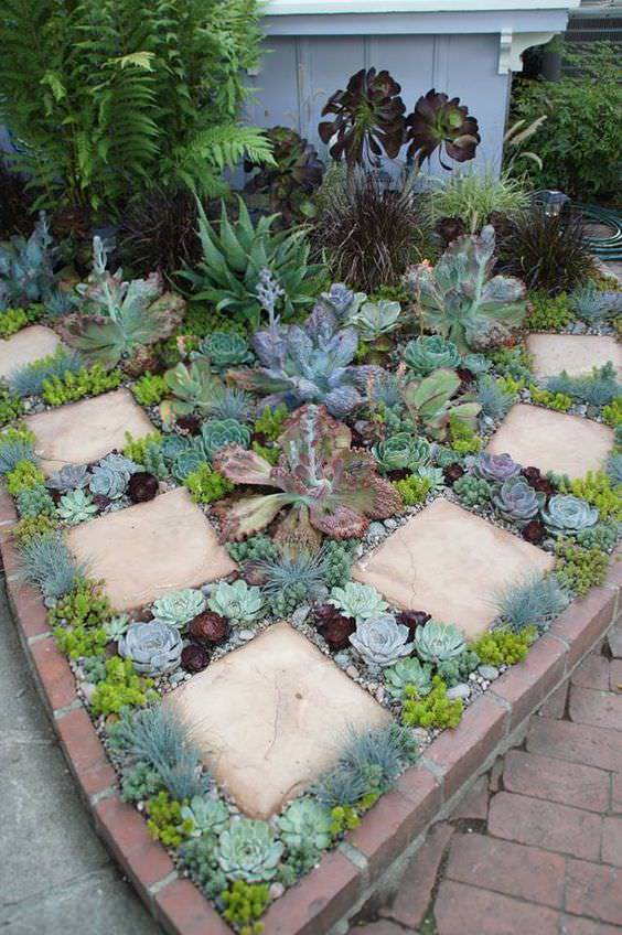 52 succulent garden designs garden designs design trends for Design your garden
