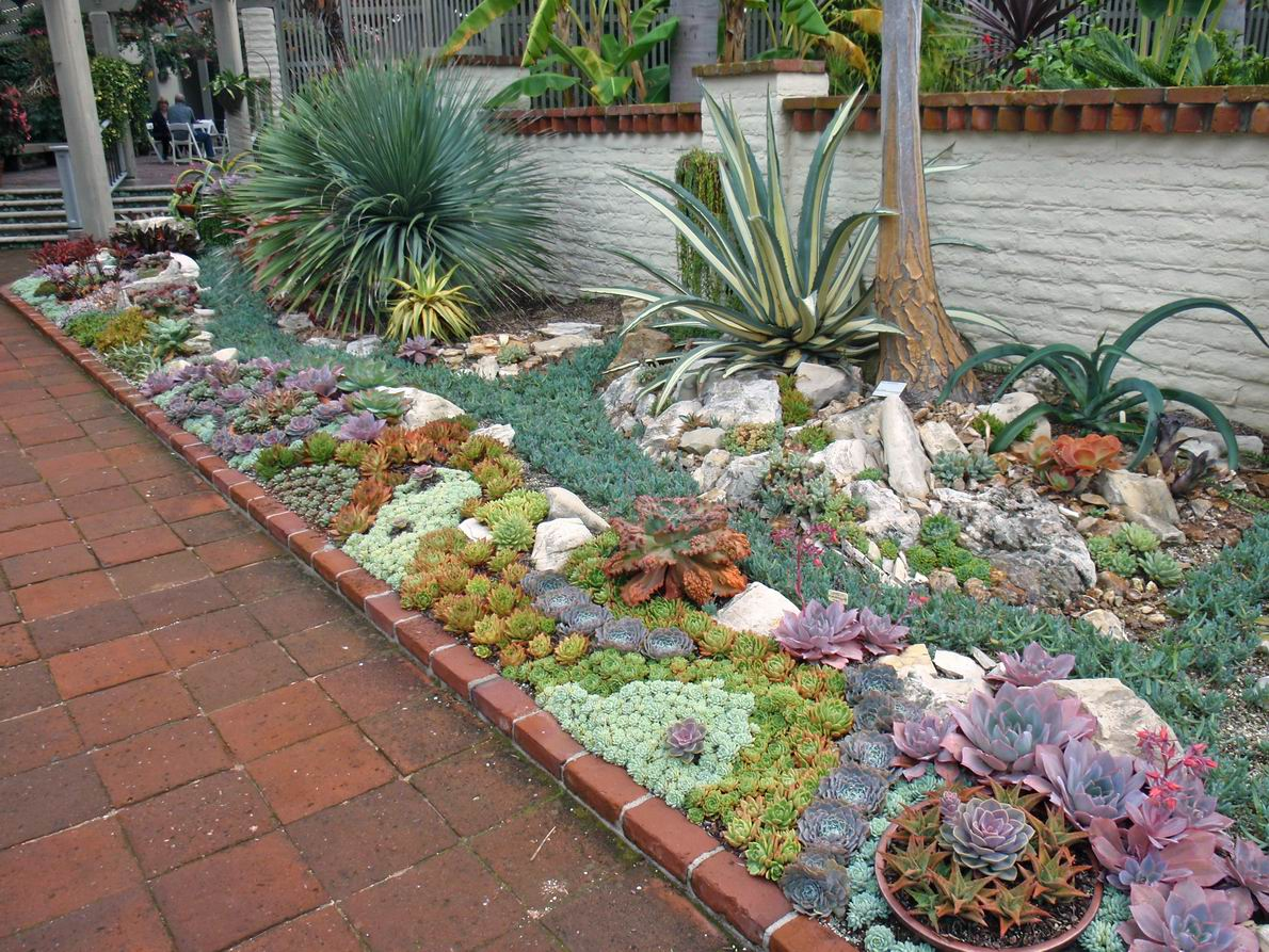 52 succulent garden designs garden designs design trends for Garden design layout ideas