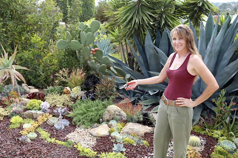 21 Succulent Garden Designs Garden Designs Design Trends