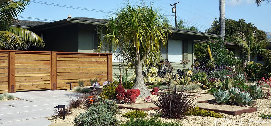 succulent garden designs garden designs design trends