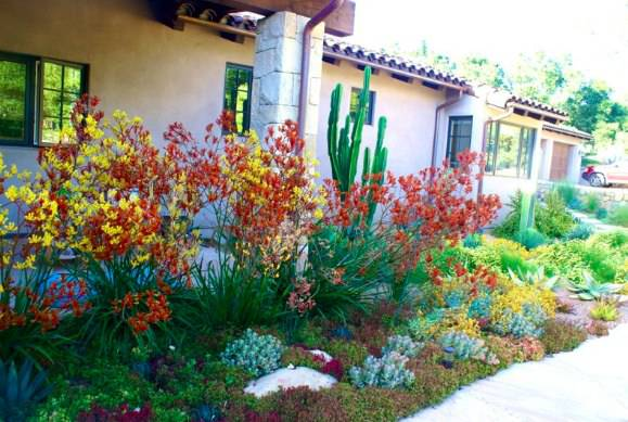 52 Succulent Garden Designs Garden Designs Design Trends - how to design a succulent garden
