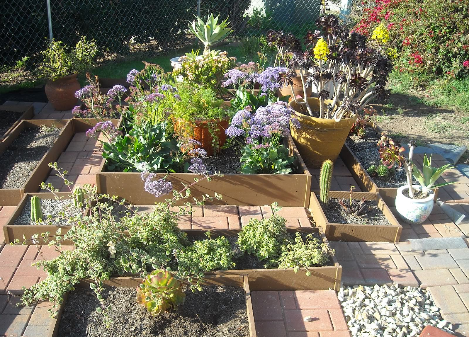Succulent garden design ideas attractive design for Garden design inspiration