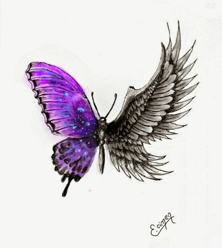 18 Butterfly Drawings Art Ideas Design Trends