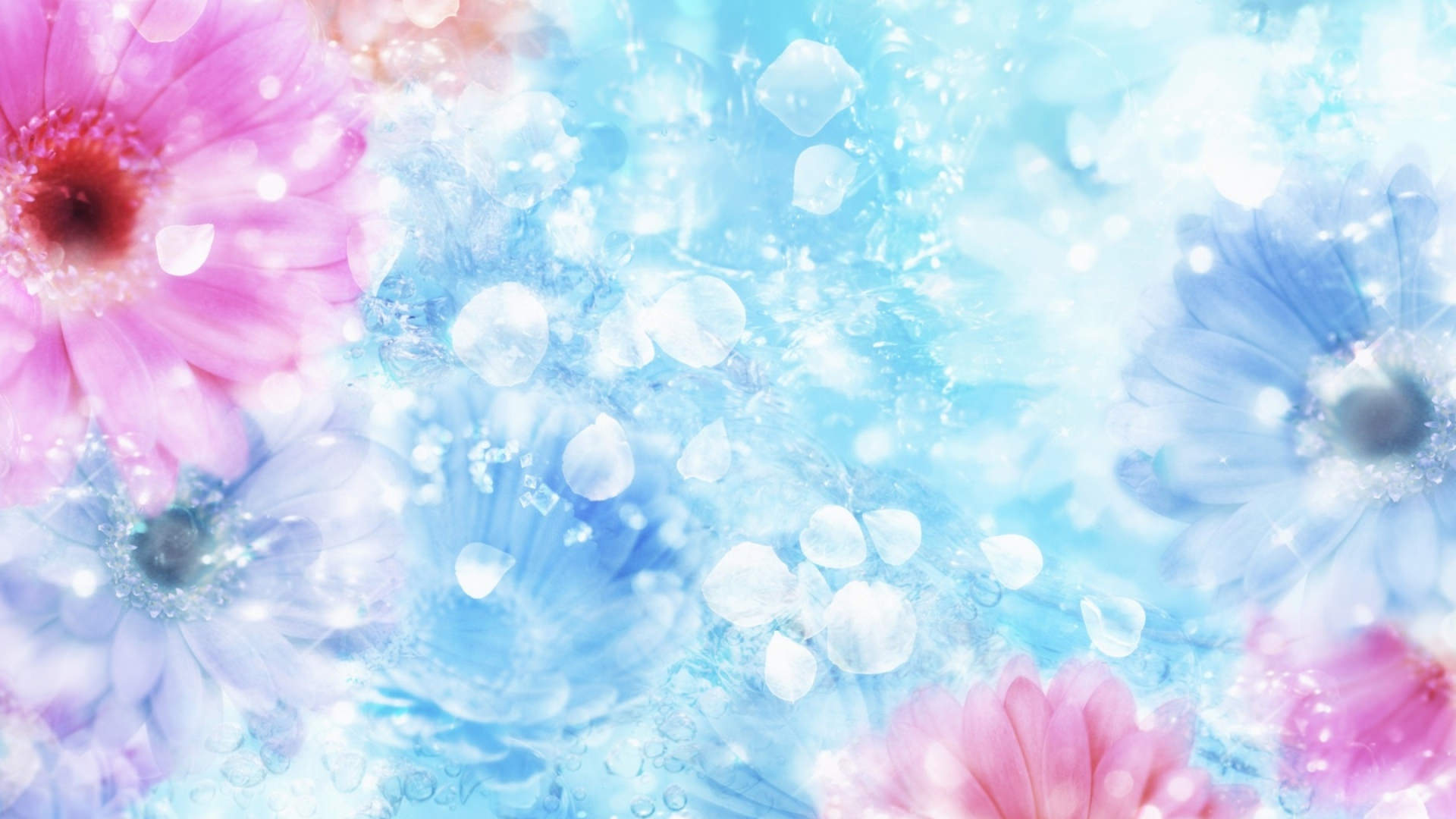 Free Colorful Flower Desktop Wallpaper: 29+ Bright Backgrounds, Wallpapers, Images