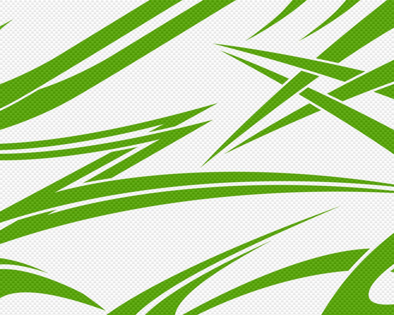 green and white backgrounds - photo #13