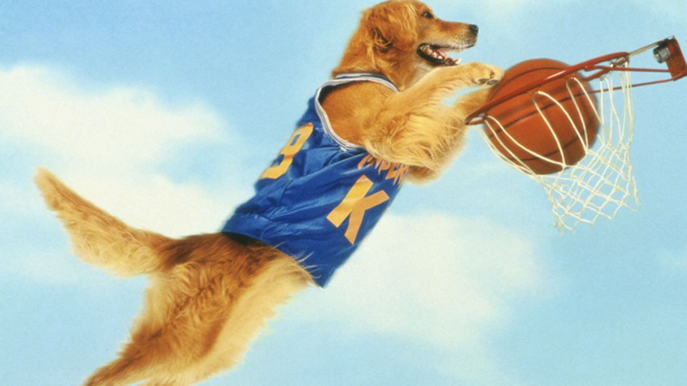 wallpaper ball boy basketball - photo #45