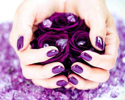 Pure Dark Purple Nail Design, purple , rose.