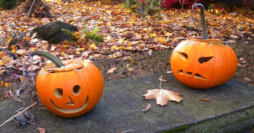 Expressive Pumpkin Carving Patterns Design As Happy