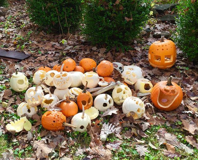 skeleton pumpkin carving in house