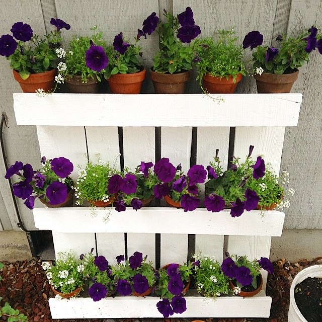Flowers Pallet Planter Design