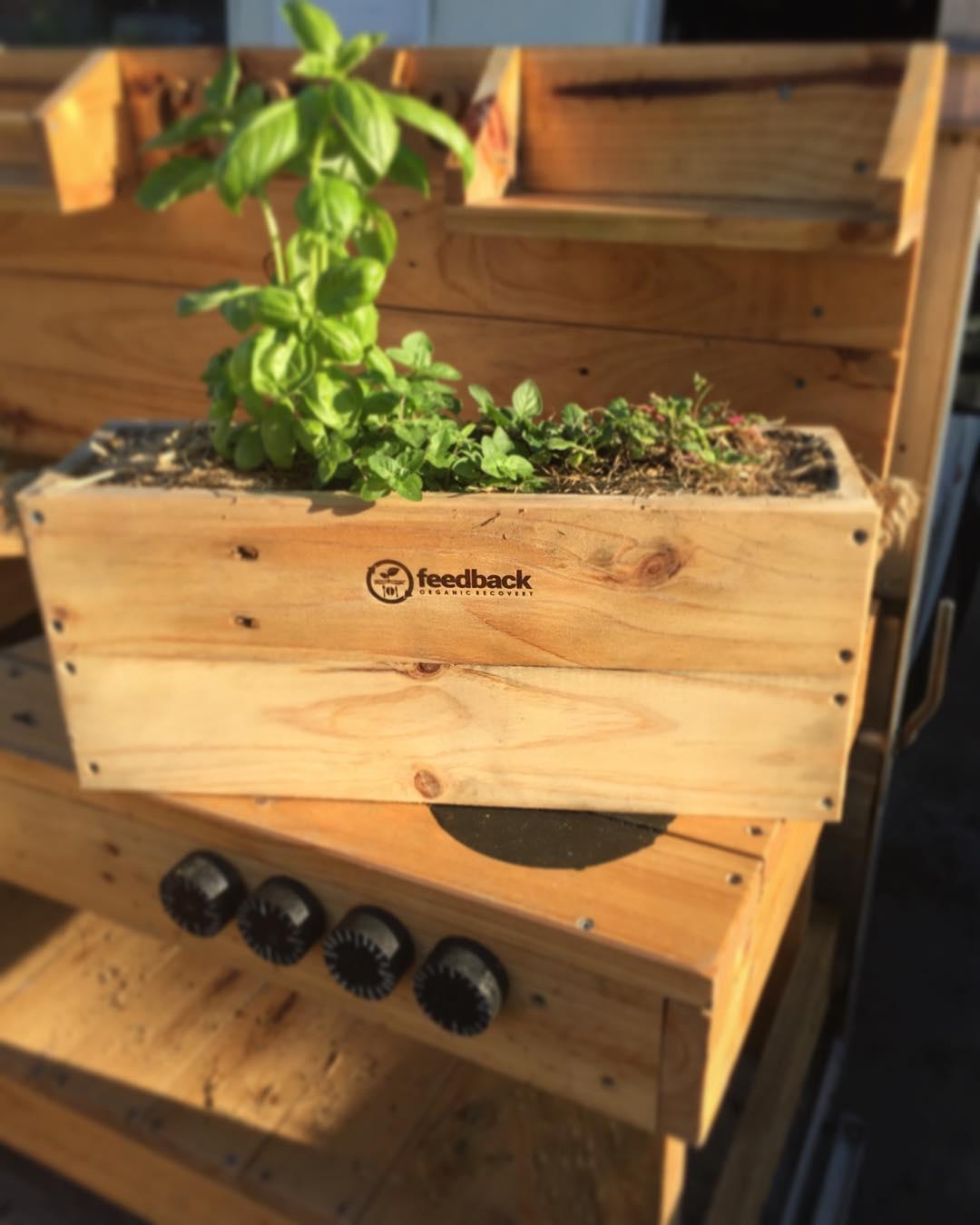 Freshest Pallet Planter Design