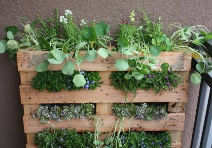 Vertical Pallet Planter Design