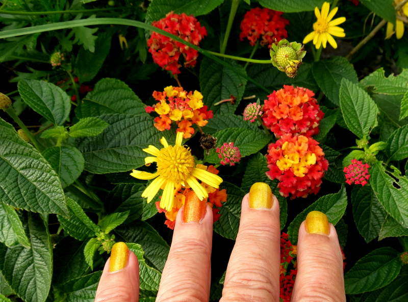 Yellow Fall Nail Designs