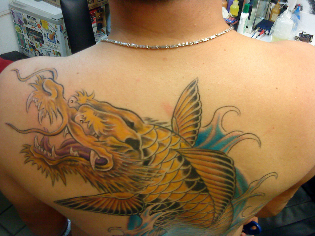32 koi fish tattoo designs tattoo designs design trends for Dragon fish tattoo