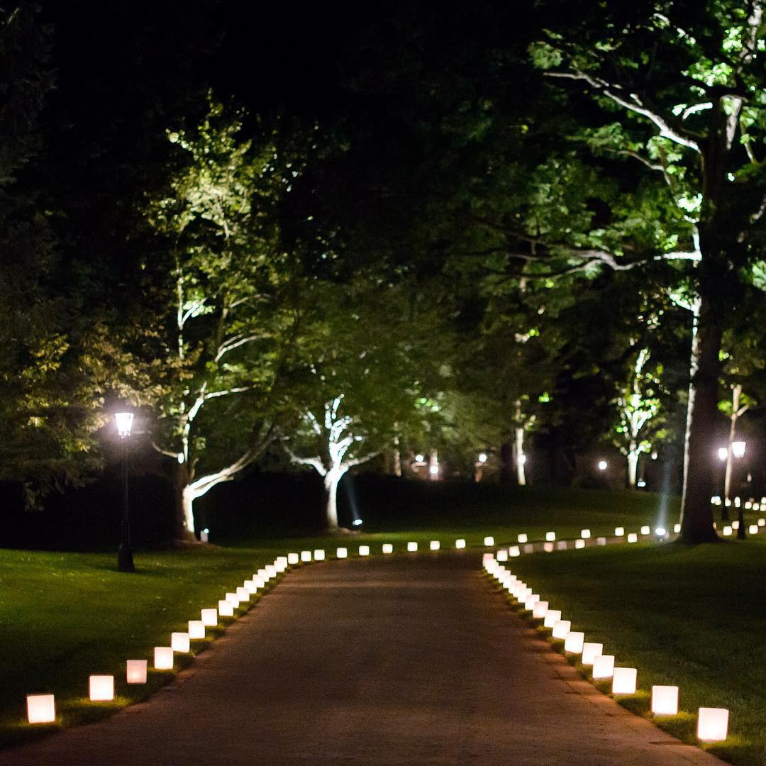 tree outdoor lighting design