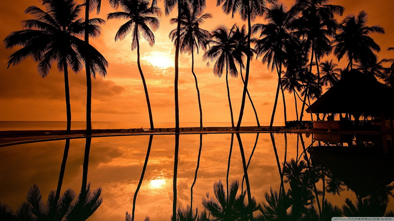 Hawaiian Beach Sunset Reflection wallpaper