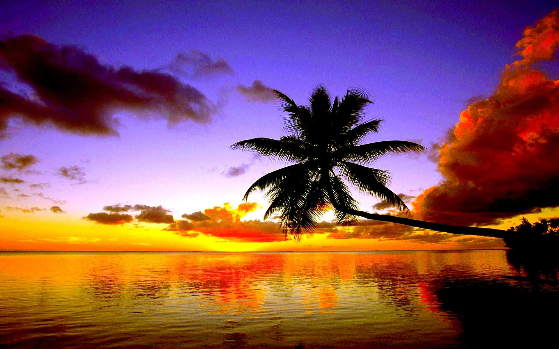 Tropical Beach Sunset Background