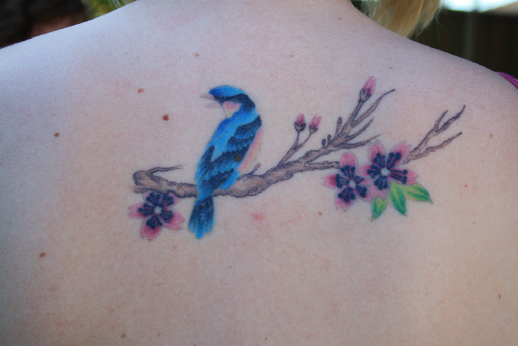 Peacock and Cherry Blossoms Tattoo on Back