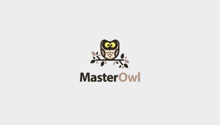 stunning owl logo design