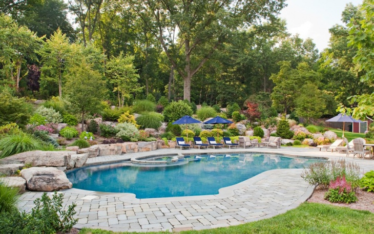 Awesome Backyard Landscape with Pool