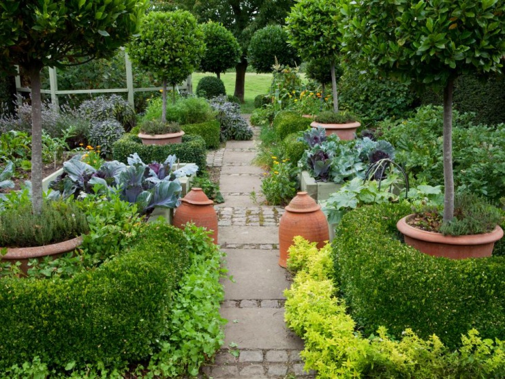 Formal Garden Pot Plants