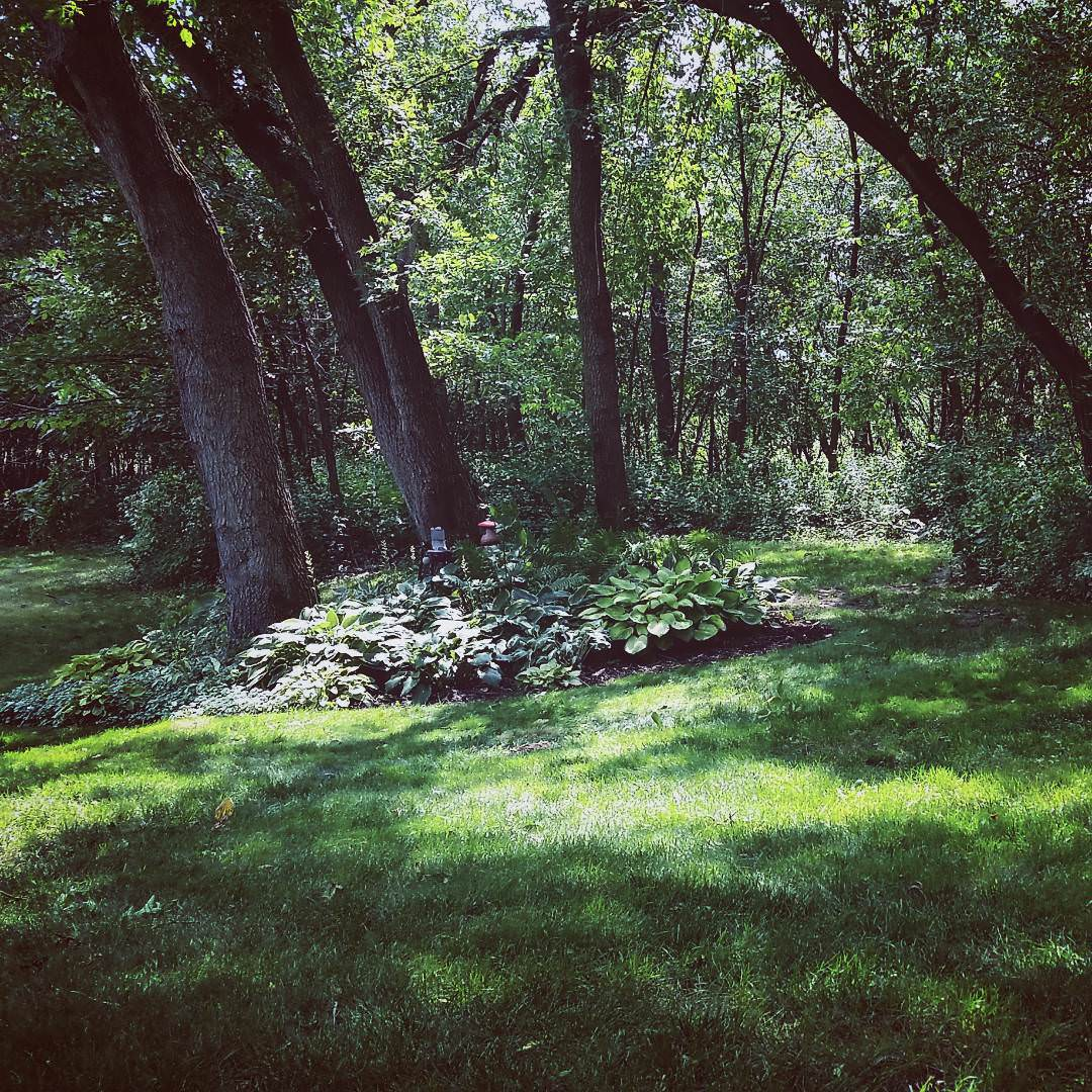 carlsgaard shade garden design