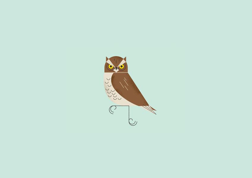 owl logo design1