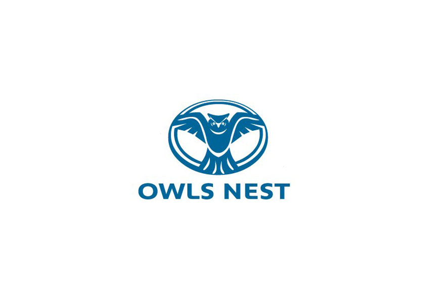 32+ Owl Logo Designs, Ideas, Examples