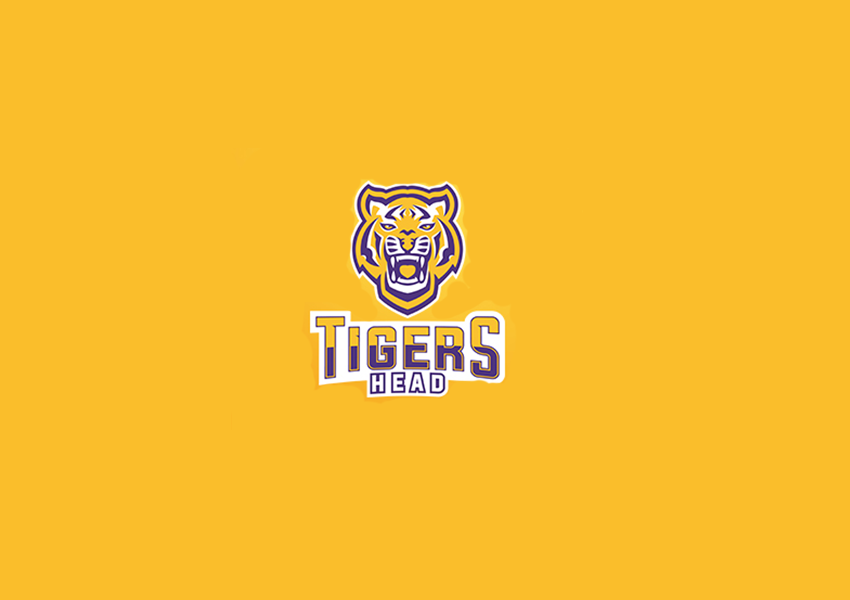 tiger logo designs1