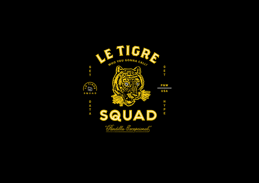 tiger logo designs2
