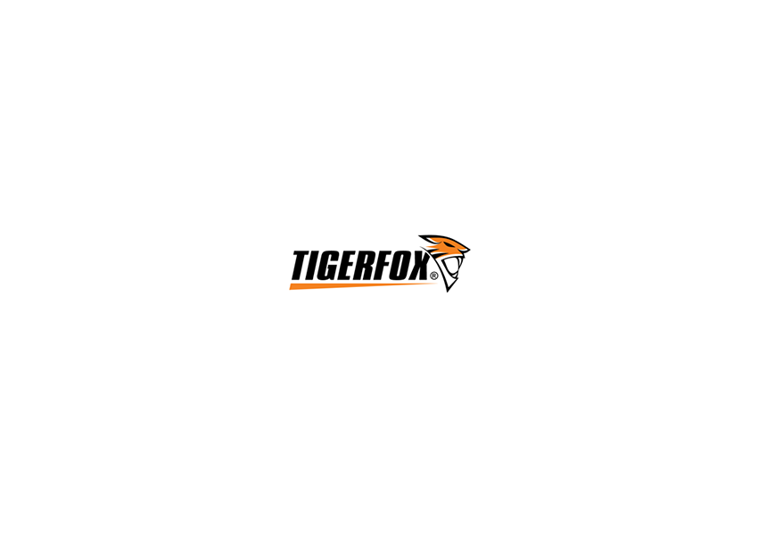 tiger logo designs13