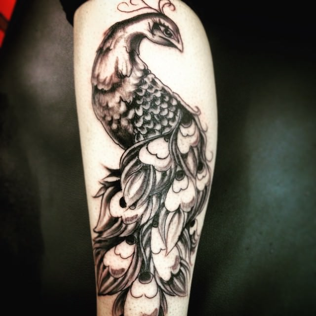 Peacock tattoo designs