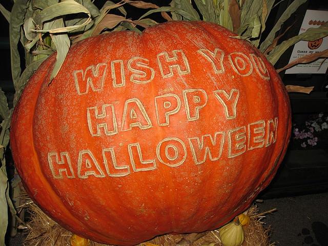 hall message pumpkin carving patterns design