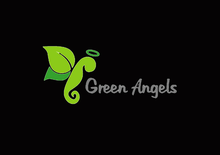 angel logo designs5