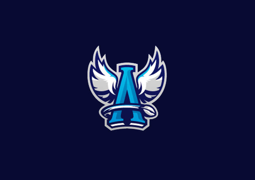 angel logo designs13