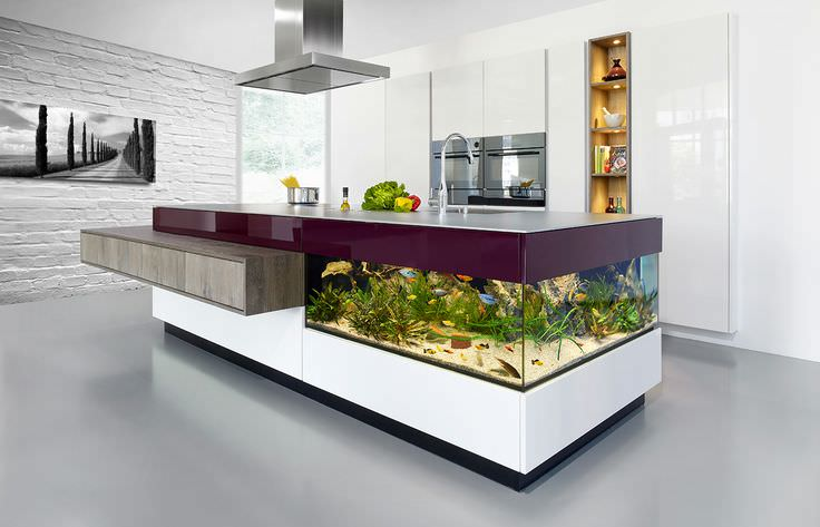 aquarium dining designs