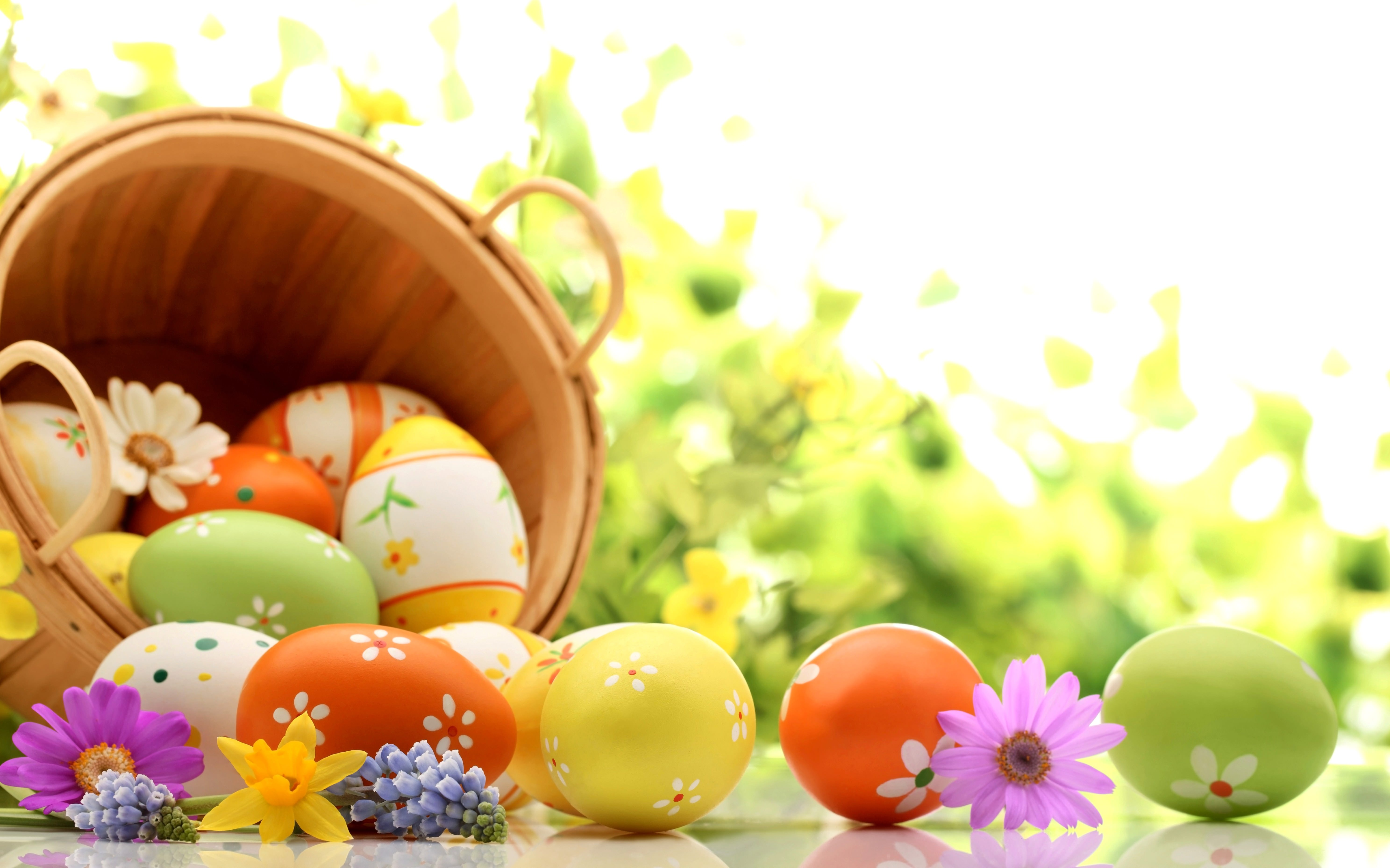 Easter,Egg,Background,Designs,Basket,Flowers,