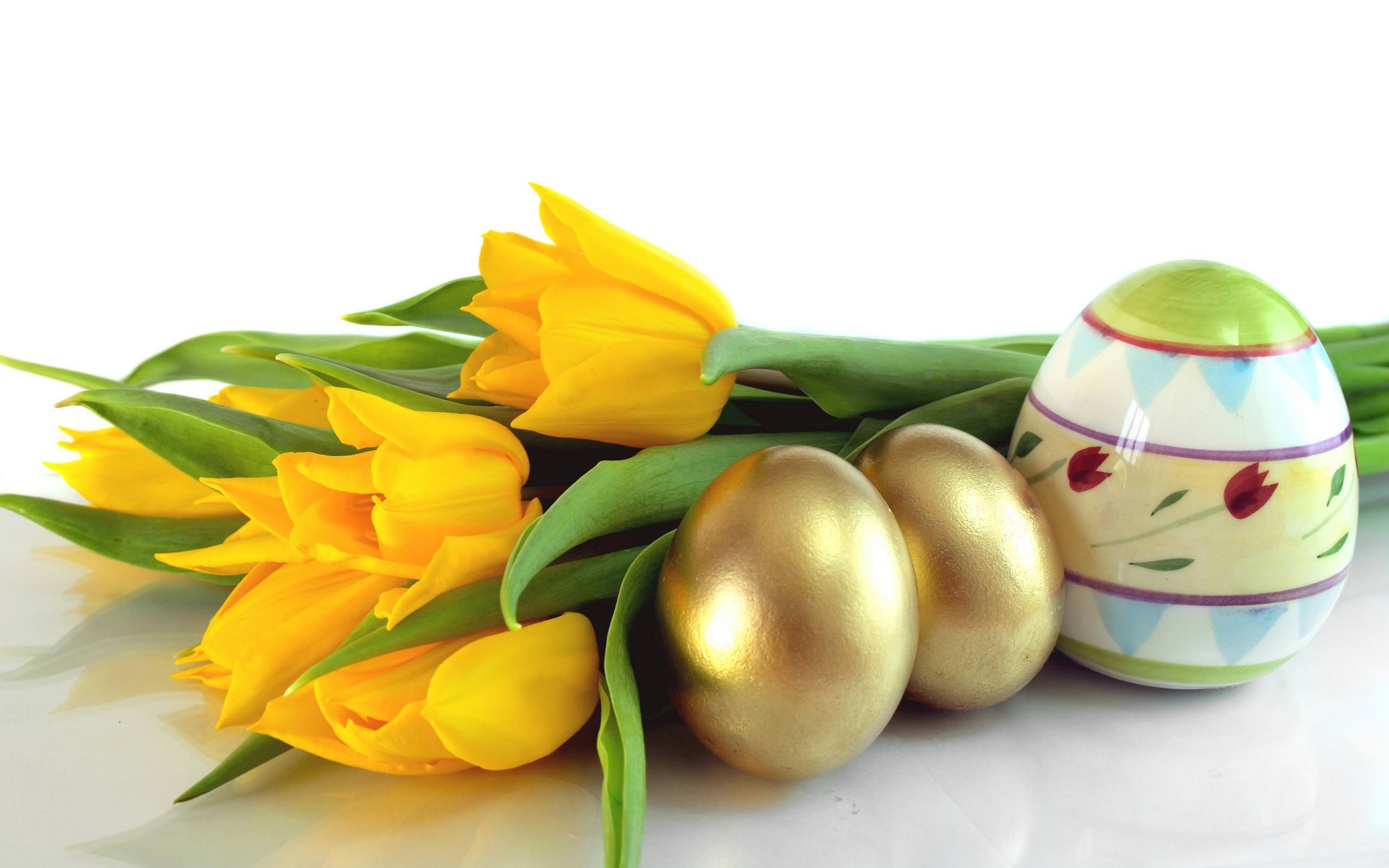 Easter,Background,Designs,Eggs,Tulips