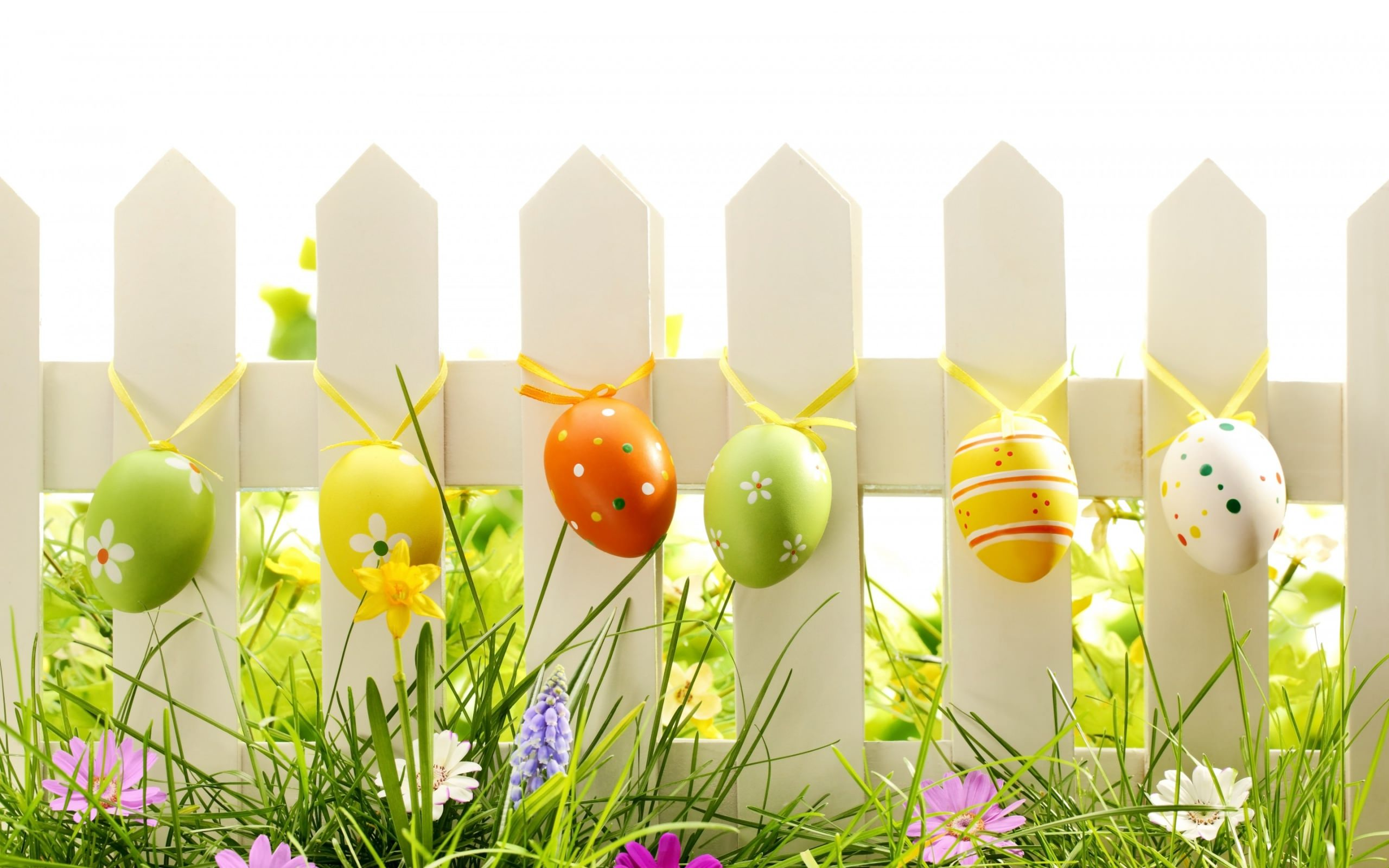 Easter,Background,Designs,Eggs,Flower