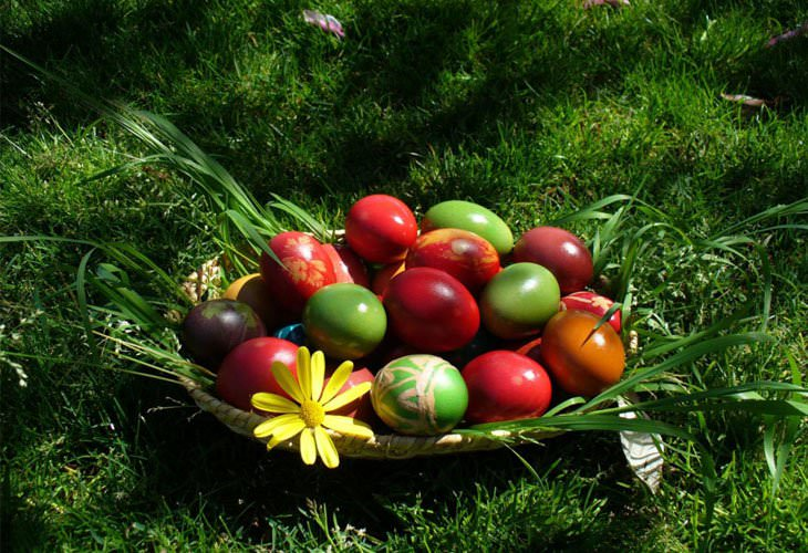 Easter,Background,Designs,Eggs,Flower,Basket
