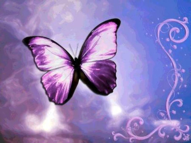 purple-fantasy-butterfly-background