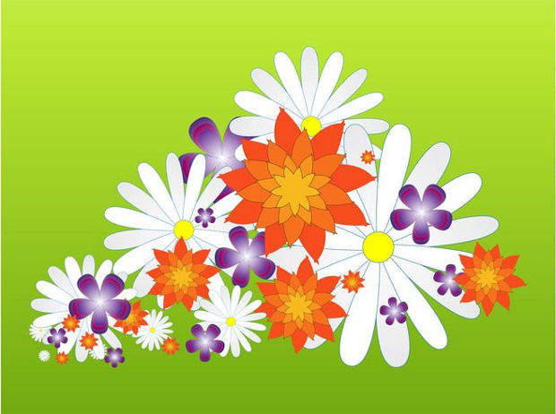 Spring Flower Blossoms Vector
