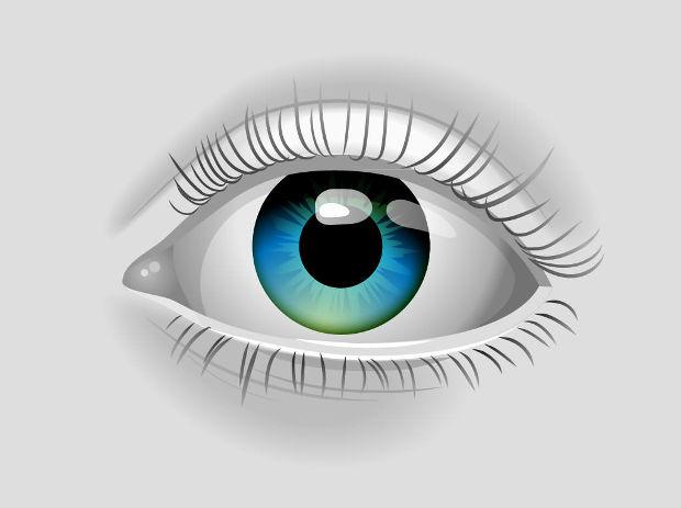 realistic eye vector design