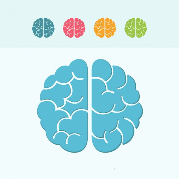 Colorful Brain Icons Vector