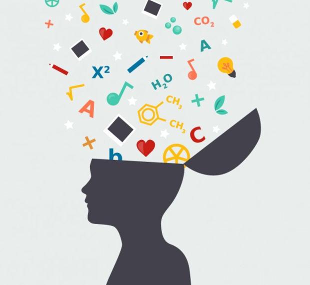 Student Brain Vector