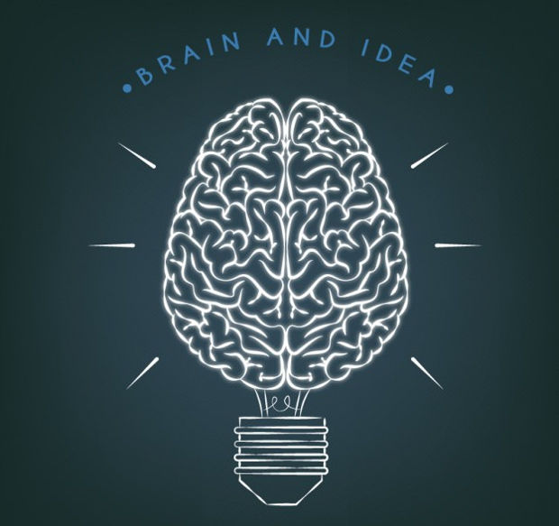 Brain and Idea Vector