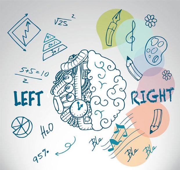 sketchy brain vector