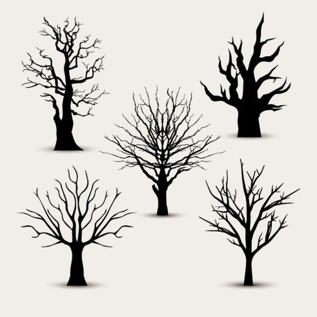 Tree Silhouettes without Leaves Vector