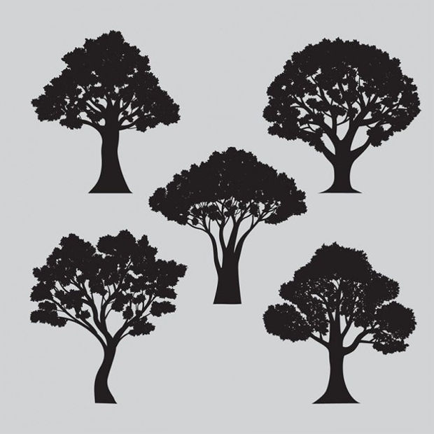 Variety of Tree Silhouettes Vector
